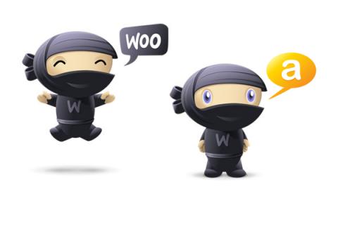 temi grafici Woo-Themes per WordPress gratis su AlterVista