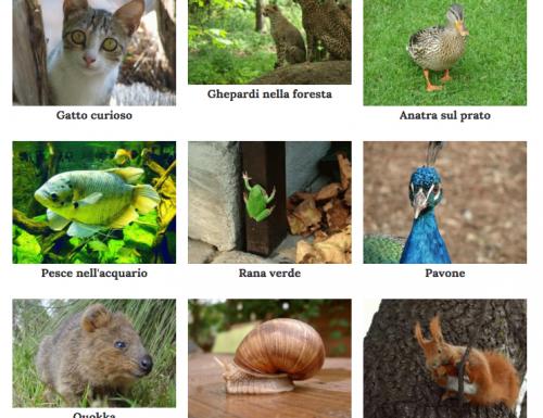 Nuove immagini per il tuo sito creato con Alterpages