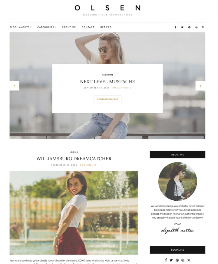 temi wordpress responsive professionali olsen light