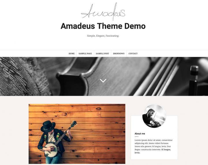 Temi WordPress professionali responsive Amadeus